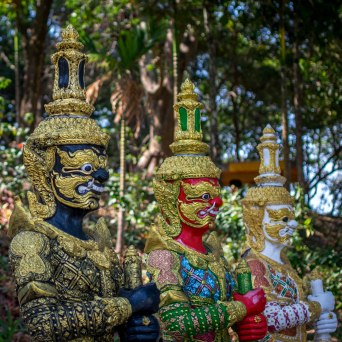 Budda Warriors