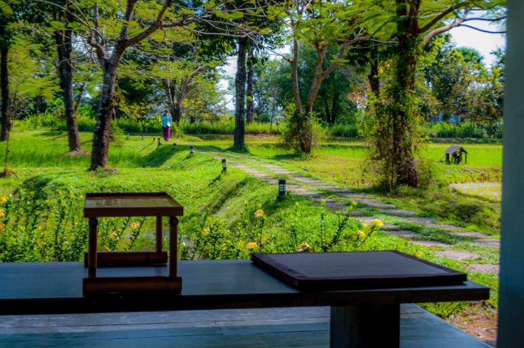 KP in garden